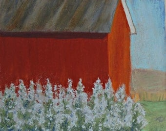 White Flowers with Red Barn