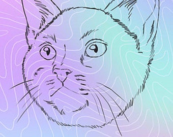 Astral Cat