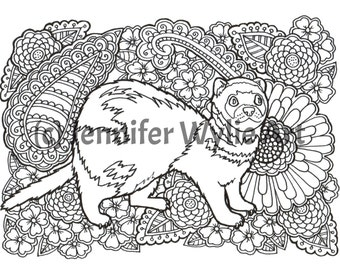 Ferret Animal Coloring Page