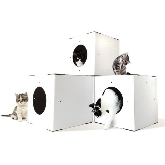 White Cat House 4 Pack Modular Cat House Cat Houses Indoor