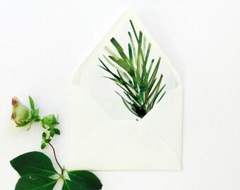 Botanical Envelope Liner / Botanical Pattern Series / Botanical Design / Basic Liner Series / Painting Liner / Botanical Art Pattern