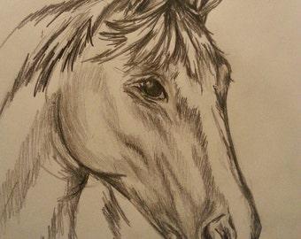 5 Minute Pony