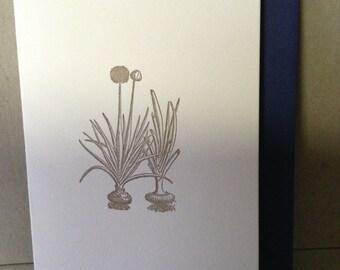 Onion Card