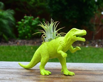 Any Color Plantasaurus / T-Rex Dinosaur Planter with Air Plant, Air Plant Holder, Dino Planter, Low Shipping, Great Gifts!