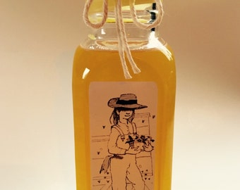 Raw, Treatment Free 1lb Honey from The Barefoot Beekeepers