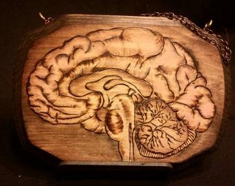 Human Brain Wall Decor