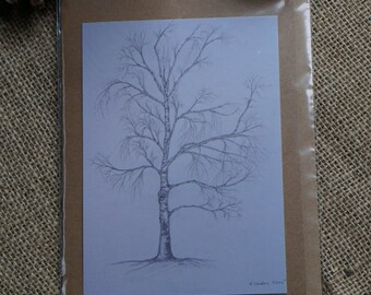 Silver Birch study blank gift card A5