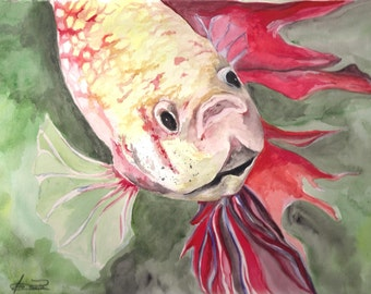 red and gold betta fish original watercolor painting