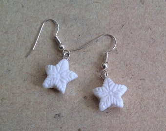 Earrings Snowflakes, Snow