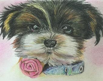 original art - Colored Pencil to draw a dog A4