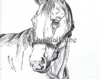 Horse Sketch Print