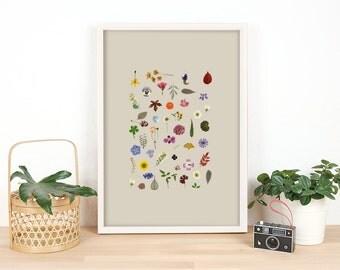 021 # Medley of Dried Pressed FLower / Tropical flower Decor / Digital Print Poster / Botanical Photo /  Card / Instant download Design