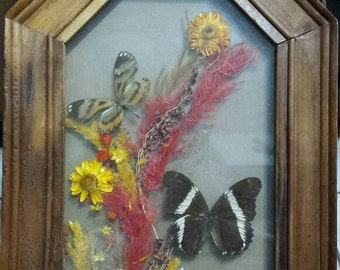 Vintage butterflies with dry flowers  in a wooden frame