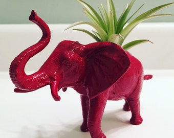 Planter Pals: Red Elephant