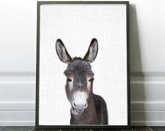 Donkey Artwork, Donkey Poster, Instant Download Print, Farm Animal Poster Art, Farm Prints, Nursery Room Art, Kids Art, Home Decor Prints