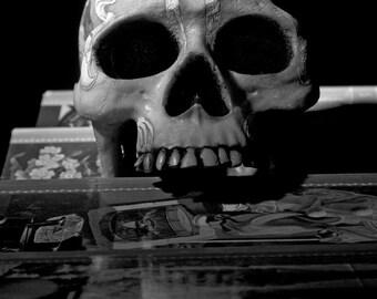La Calavera // The Skull