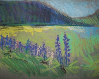 Lupine by the Bay