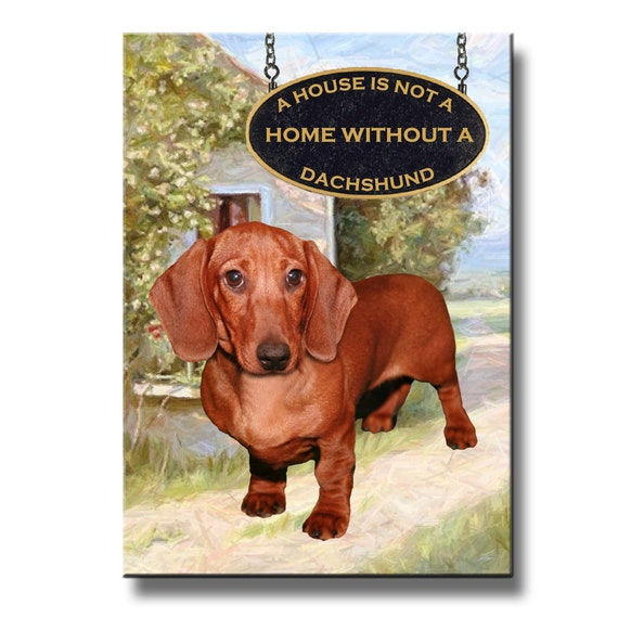 Dachshund a House is Not a Home Fridge Magnet No 5