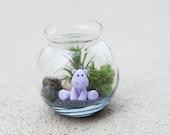 DIY Purple Hippo Air Plant/Tillandsia Terrarium
