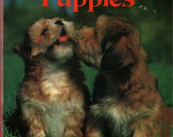Puppies a Golden Book - 1982 - Vintage Kids Book