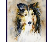 Watercolor Sheltie Note Cards, Notecards, Sheltie Print, Sheltie Dog Stationary, Sheltie Dog Art, Gift Box Set, Pet Cards, Stocking Stuffers