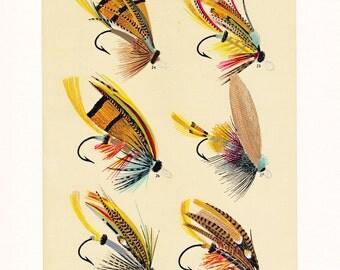 vintage fly fishing print, a printable digital download, image  no. 958