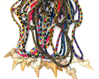 Wholesale Lot Fossil Shark Tooth Necklace Adjustable Paracord Sized for Youth to Adults Choice of 12 Mixed Colors 12 Pieces 7195M