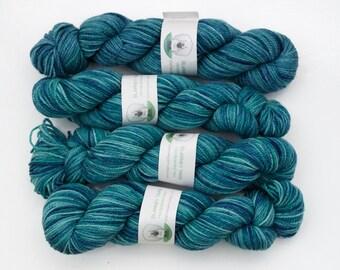 Clearance - Superwash Merino Wool Sock Yarn in Mavericks by Blarney Yarn