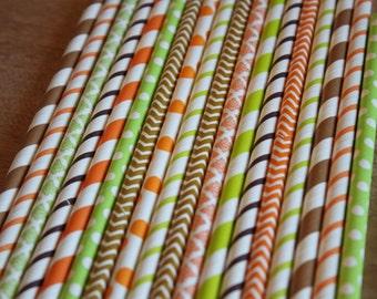 Brown Green Orange Straws, Thanksgiving Theme, Brown Stripes, Lime Green Dots, Orange Chevron, Harvest Gathering, Fall Festival, Thankful