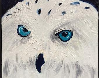 Snow Owl Original Oil Painting Daily Painting