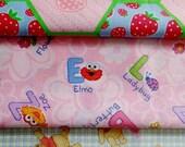 Strawberry Shortcake, Sesame Street, Winnie The Pooh, Fabric Set.