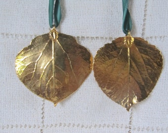 24 Kt. Gold Dipped Aspen Leaves Pair, Ornaments, Pendants, Earrings