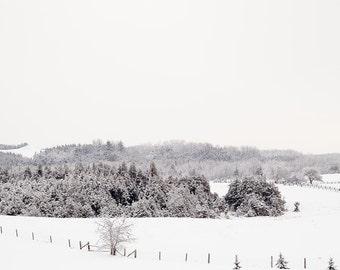 Nordic Winter Landscape Picture - Landscape Photo - Minimalist Landscape Photography - Rustic Nature Picture - Winter Snow Scene Picture