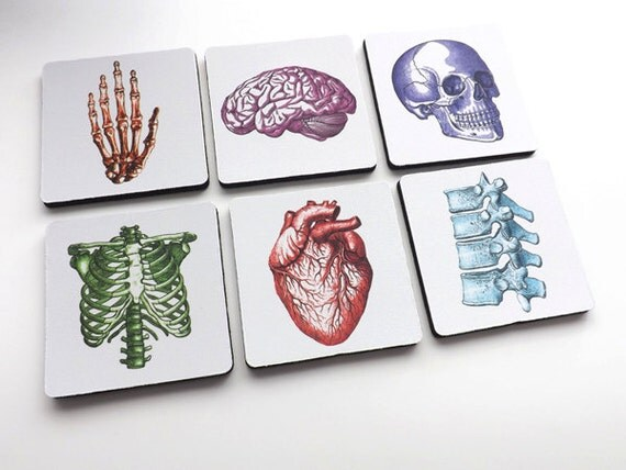 Doctor Nurse gift COASTERS medical office school anatomy student graduation party anatomical heart science goth hospital physician assistant