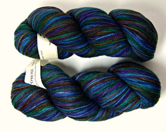 Cherry Tree Hill Supersock DK Select Yarn - Martha's Vineyard