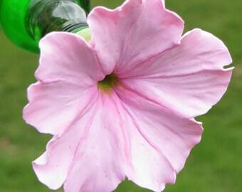 HUMMINGBIRD FEEDER --Pink Four O'Clock with Darker Center