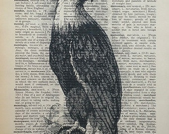 Eagle Print 8x10 Vintage Dictionary Page- Buy 2 get 1 FREE