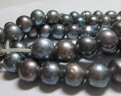 Large Hole Fresh Water Pearl Beads, 10mm Freshwater Pearl, Black Peacock, 2mm Large Hole Pearl, Pearl Potato Round, 10mm - QTY 10 - fw13bk