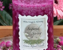 Sugared Spring Ostara Candle 3x4 Pillar . New Beginnings  and the Coming of Spring