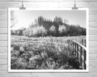Black and White, Winter Photography, Art Photography, Winter Art, Countrysides, Winter Landscape, Frosty, Arivaca, MurrayBolesta