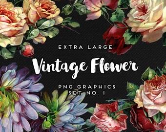 Vintage Roses and Flower Digital Graphics, Print, Web, Scrapbook, Design, Commercial Use - INSTANT DOWNLOAD