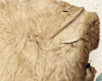 Gorgeous all natural toffee color lambskin leather a full 7 square foot hide