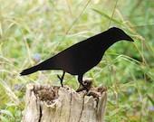 Black Metal Garden Crow 3, Raven Bird Ornament