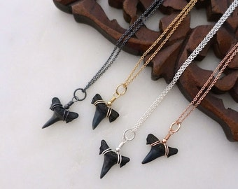 Small Fossil Shark Tooth Necklace, Gold Shark Tooth Necklace, Rose Gold Shark Tooth Necklace, Silver Shark Tooth Necklace, Shark Tooth Charm