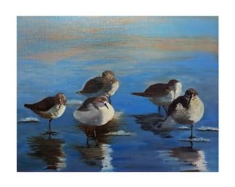 "Plovers Birds On Beach ""Breezy Shore"" Original Oil Painting Bird Decor Beach-Scape  Wildlife Art"