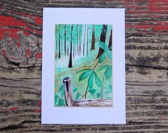 Fine Art Print: Forest Woodland Landscape  P20164