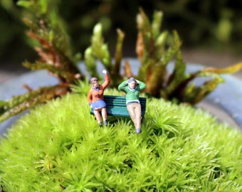 Micro mini Moss terrarium-Couples on a bench-Pillow moss-Choose live or preserved Moss