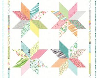 SUMMER SALE - Frivol 11 (June) - Sew and Sew - Shine - by Chloe's Closet for Moda Fabrics