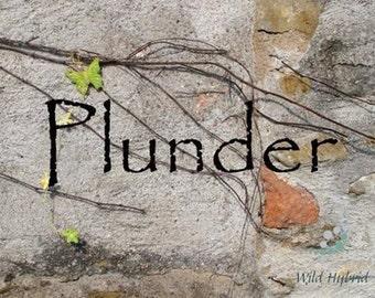 Plunder Perfume Oil - 5ml - spices, leather, woods, wine, ambergris, golden honey, caramel, sugar, apple, amber, animal musks, gunpowder