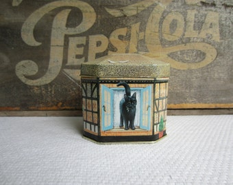 Vintage Cat House Tin Lesley Anne Ivory Hunkydory Tin made in England